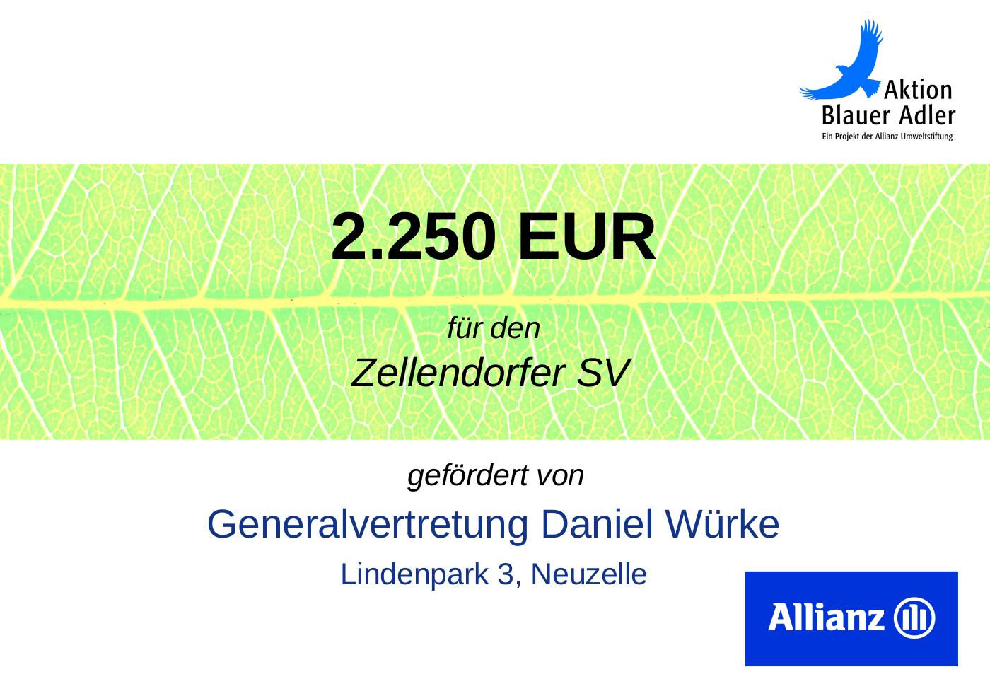 Scheck_Allianz